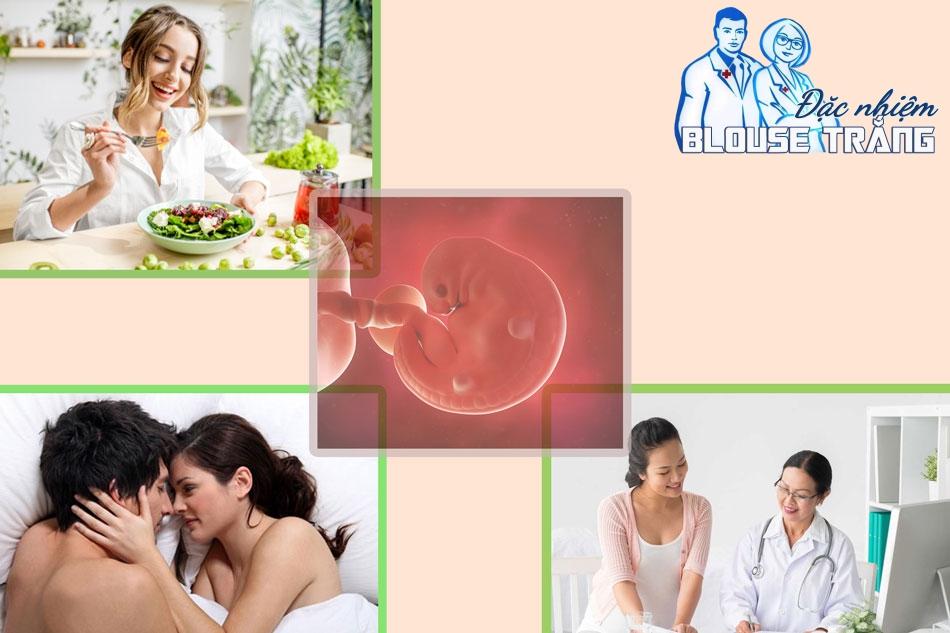 Các phương pháp tăng tỷ lệ thụ thai